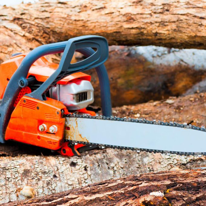 chainsaw in the wood